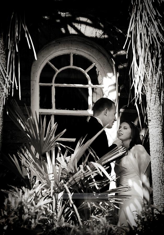 landgdale chase wedding photography